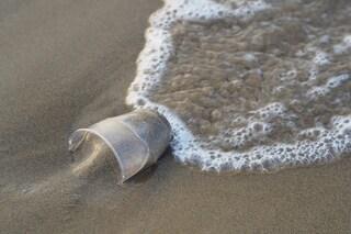 Fondali italiani pieni di rifiuti: 1500 oggetti per ettaro nel Mar Ligure, 1200 nel Golfo di Napoli