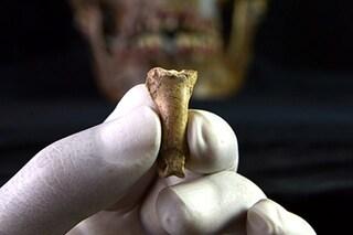 L'ultima collana dei Neanderthal: un artiglio di aquila di 39mila anni scoperto in Spagna