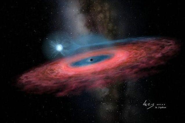 Il buco nero LB–1 e la sua stella compagna. Credit: YU Jingchuan, Beijing Planetarium, 2019.