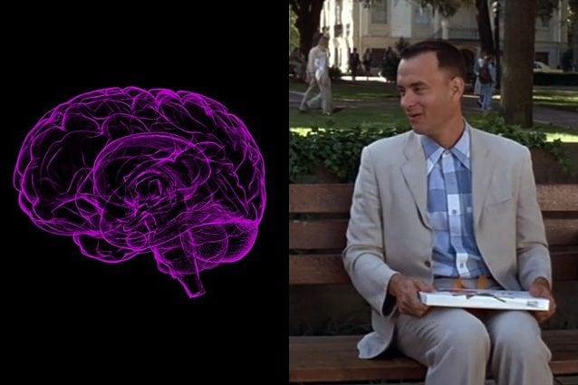 Tom Hanks sulla panchina di Forrest Gump. Credit: a sinistra cervello/sbtneet – a destra screenshot youtube del trailer ufficiale di Forrest Gump