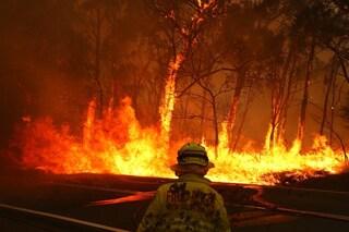 Caldo record e incendi catastrofici in Australia, sfiorati i 50° C: cosa sta succedendo
