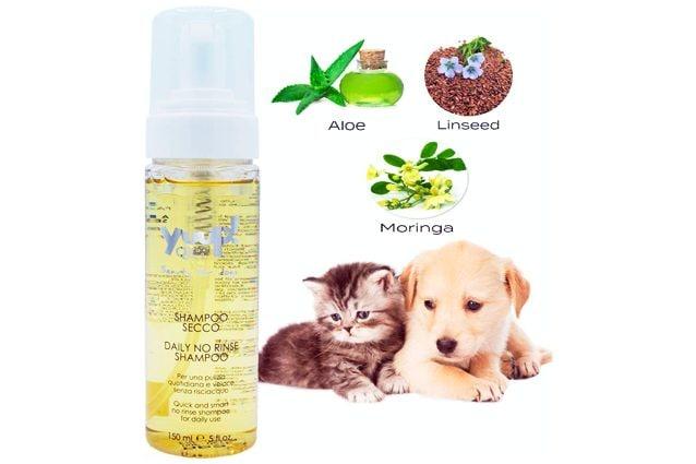 migliori shampoo per cani