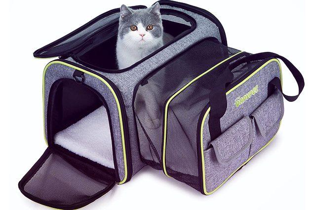migliori trasportini per gatti