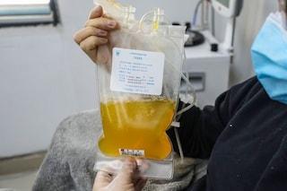 Plasma iperimmune dei guariti inefficace nei pazienti Covid già malati: non è più raccomandato