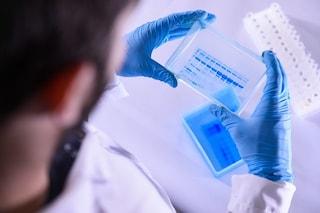 Il ceppo europeo del coronavirus più contagioso e mutevole dell'asiatico: la ricerca italoamericana