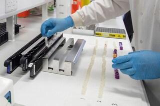 Possibile immunità anche dopo un'infezione lieve da coronavirus: rilevati anticorpi neutralizzanti