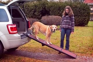 Rampe per cani: le migliori per auto, divano e barca