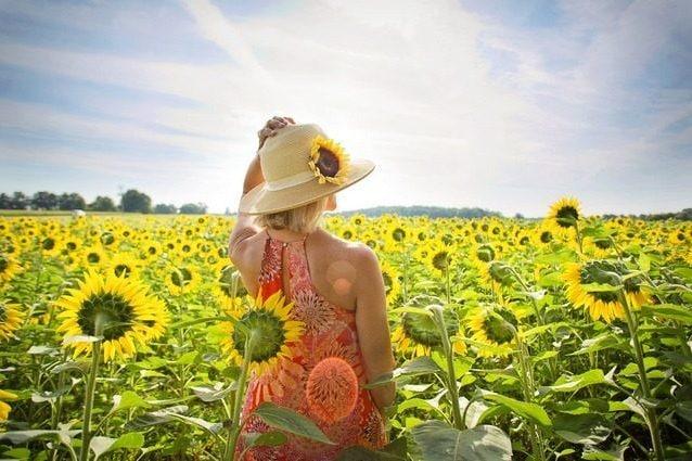 Oggi è il primo giorno estivo: cos'è il solstizio d'estate e perché si chiama così
