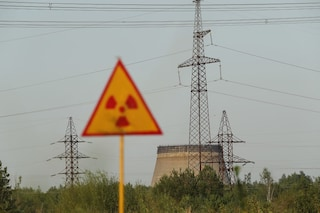 Nel reattore nucleare di Chernobyl scoperto un fungo che protegge dalle radiazioni