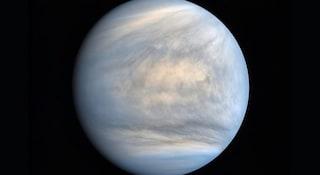 """C'è vita su Venere? Trovate tracce di fosfina: """"Sostanza prodotto da attività biologica"""""""
