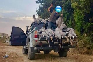Cacciatori di frodo massacrano decine di gru e pubblicano le immagini sui social per vantarsi