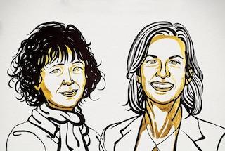 Nobel per la Chimica 2020, vincono Charpentier e Doudna per tecnica di editing genetico CRISPR-CAS9