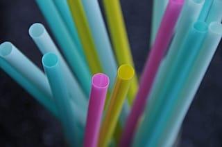 Il Canada vieterà buste, cannucce e altri articoli monouso di plastica entro il 2021