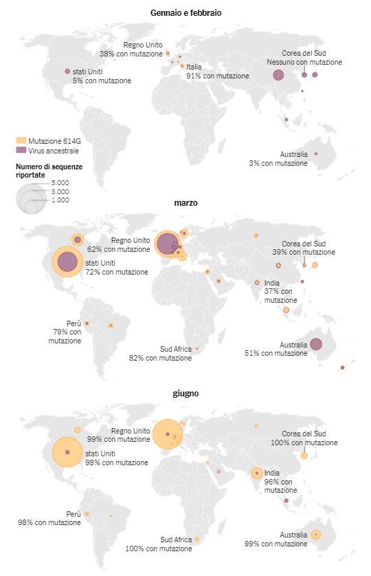 La mutazione 614G, individuata per la prima volta in Cina orientale nel mese di gennaio, si è diffusa rapidamente in tutto il mondo, sostituendo le altre varianti / Fonte: Santiago Justo Arévalo