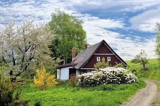 Avere del verde attorno casa protegge la nostra salute mentale dalla pandemia