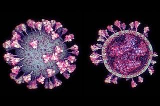 Una mutazione ha reso il coronavirus otto volte più contagioso
