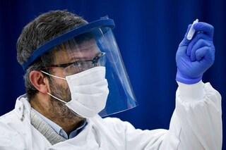 Farmaco orale Molnupiravir blocca contagio da coronavirus in sole 24 ore nei furetti