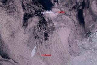 L'iceberg più grande del mondo diretto verso isola-paradiso per pinguini e foche: rischio disastro