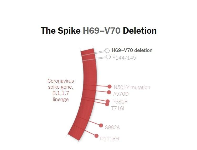 La delezione H69–V70 sul gene della proteina Spike della variante B.1.1.7