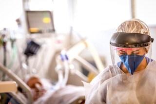 Perché in Nuova Zelanda la pandemia ha risparmiato migliaia di vite