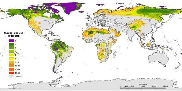 In viola le aree incontaminate. Credit: Frontiers in Forests and Global Change