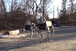 Spot, il cane robot di Google