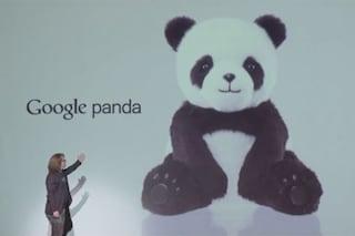 Google Panda, il peluche che risponde a tutte le vostre domande