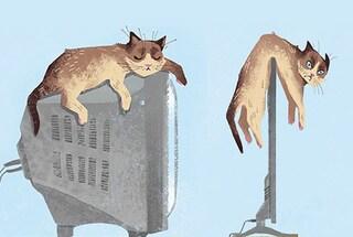 5 abitudini del tuo gatto che la tecnologia ha stravolto