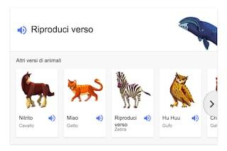 Google, il motore di ricerca introduce i versi degli animali
