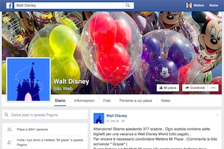 "Facebook, attenzione alla bufala: ""Vinci una vacanza a Walt Disney World"""
