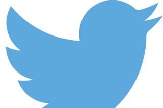 Come funziona Twitter: guida per cinguettare