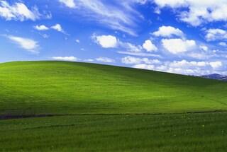 Windows XP, ecco la storia dello sfondo nato 20 anni fa