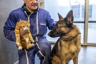 Su Facebook i cani hanno più amici dei gatti