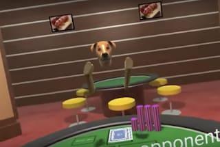 Google ha fatto giocare dei cani a poker per combattere il bullismo in realtà virtuale