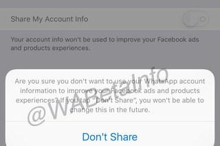 WhatsApp condividerà le informazioni con Facebook