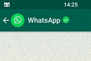 WhatsApp, in arrivo una chat dedicata alle ultime novità dell'app