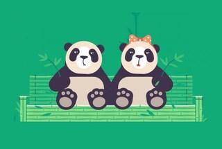 Pornhub vuole farvi fare sesso vestiti da panda (per salvare quelli veri)