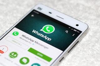 Da febbraio arrivano le nuove regole di WhatsApp: dovrai accettarle o eliminare l'account