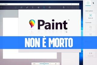 No, Paint non scomparirà da Windows (lo dice Microsoft)