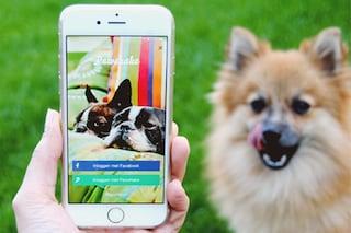 Pawshake, l'Airbnb per gli animali che fa incontrare padroni e pet sitter