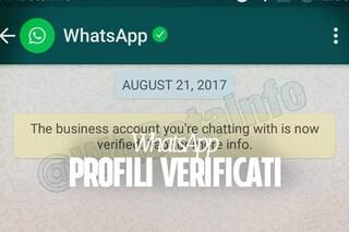 WhatsApp Business, arriva la spunta verde per i profili verificati
