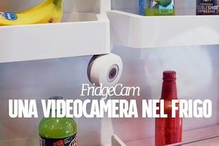 FridgeCam, la videocamera smart che controlla cosa c'è in frigo (e ti dice cosa comprare)