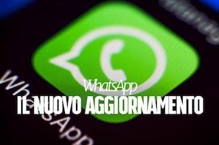 WhatsApp, nuovo aggiornamento per Android: tra le novità la modalità picture-in-picture per le videochiamate