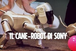 Sony tornerà a produrre il cane robot Aibo