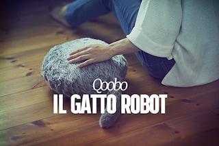 Qoobo, il gatto robot che non ha la testa, ma scodinzola e lo puoi accarezzare