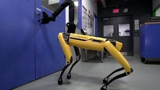 SpotMini, se ad aprirti la porta di casa è un cane robot