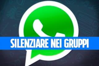 506982406161 Novità WhatsApp  come silenziare gli utenti nei gruppi