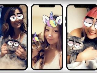Con Cat Lenses Snapchat permetterà di applicare filtri anche ai gatti