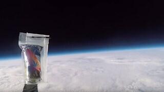 Un team italiano ha inviato della cannabis nello spazio