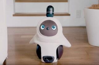 Lovot, il robot giapponese che ti farà venire voglia di abbracciarlo